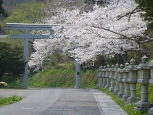 春の函館八幡宮
